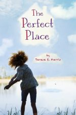 child throwing a rock into a lake on the cover of The Perfect Place