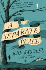 cover of A Separate Peace